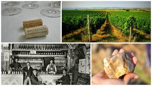 Bratanov winery collage